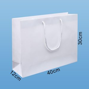 papiertaschen expresslieferung, papiertragetaschen, papiertaschen 40 cm